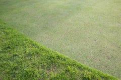Πράσινος τομέας χλόης του γηπέδου του γκολφ Στοκ Φωτογραφία