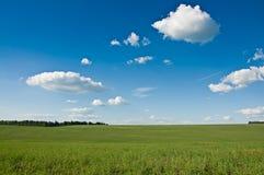 Πράσινος τομέας Στοκ Εικόνα