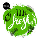 Πράσινος τραχύς κύκλος με χρωματισμένες τις χέρι επιστολές Λαχανικά ύφους σκίτσων χάραξης Μελιτζάνα, κομμάτι καλαμποκιού, πράσο κ Στοκ φωτογραφίες με δικαίωμα ελεύθερης χρήσης