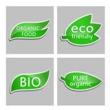 Πράσινος φιλικός, βιο, καθαρός οργανικός Eco αυτοκόλλητων ετικεττών, οργανική τροφή Σύνολο Στοκ εικόνα με δικαίωμα ελεύθερης χρήσης