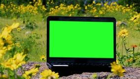 Πράσινος φορητός προσωπικός υπολογιστής οθόνης έξω Ζουμ μέσα φιλμ μικρού μήκους