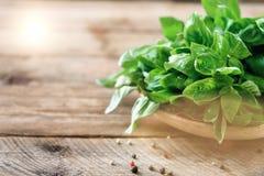 Πράσινος φρέσκος οργανικός βασιλικός στο ξύλινο υπόβαθρο με το copyspace Χορτάρια και καρυκεύματα για το μαγείρεμα στοκ φωτογραφία με δικαίωμα ελεύθερης χρήσης