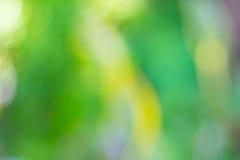 πράσινος φυσικός ανασκόπ&eta Στοκ Εικόνα
