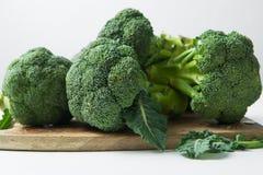 Πράσινος χειμώνας superfood - μπρόκολο μωρών Στοκ εικόνες με δικαίωμα ελεύθερης χρήσης