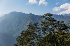 Πράσινος λόφος κοντά στο βουνό Kangchenjunga με τα σύννεφα ανωτέρω και τα δέντρα που βλέπουν το βράδυ στο βόρειο Sikkim, Ινδία Στοκ Εικόνες