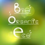 Πράσινος, eco, βιο οργανικό προϊόν Στοκ Εικόνες