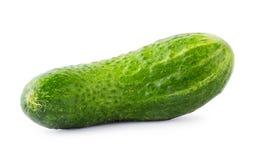πράσινος juicy αγγουριών Στοκ εικόνα με δικαίωμα ελεύθερης χρήσης