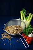 Πράσινος lentile Στοκ Φωτογραφίες