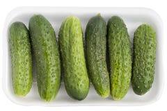 πράσινος limp παλαιός αγγου στοκ φωτογραφία με δικαίωμα ελεύθερης χρήσης