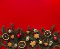 Πράσινους κομψούς κλάδους ενός στους κόκκινους υποβάθρου που διακοσμούνται με το μελόψωμο Χριστουγέννων, τους χρυσούς κώνους, τα  Στοκ εικόνα με δικαίωμα ελεύθερης χρήσης