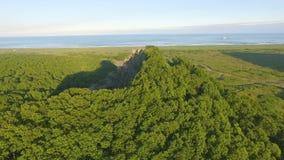 Πράσινο δάσος σε έναν βράχο Copter που πετά επάνω από το δάσος σε έναν απότομο βράχο Ενάντια στο σκηνικό απόθεμα βίντεο