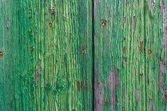 πράσινο δάσος σύστασης Τρύγος Στοκ εικόνα με δικαίωμα ελεύθερης χρήσης