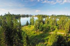Πράσινο δάσος Tatras - pleso Strbske, Σλοβακία Στοκ φωτογραφίες με δικαίωμα ελεύθερης χρήσης