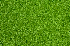 πράσινο άλας στοκ φωτογραφία