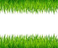 Πράσινο έμβλημα χλόης Στοκ εικόνα με δικαίωμα ελεύθερης χρήσης