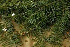 Πράσινο δέντρο έλατου και χρυσά αστέρια Στοκ φωτογραφία με δικαίωμα ελεύθερης χρήσης
