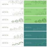 πράσινο δέντρο δενδρυλλίων φύλλων κλάδων Στοκ Εικόνες