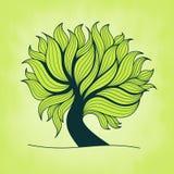 Πράσινο δέντρο με τους κλάδους και τα φύλλα Στοκ φωτογραφία με δικαίωμα ελεύθερης χρήσης