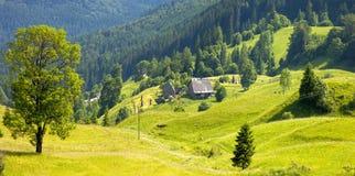 Πράσινο δέντρο που στέκεται στα μπλε βουνά και τα σπίτια ποιμένων σε GR Στοκ Φωτογραφίες