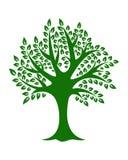 Πράσινο δέντρο στο άσπρο διάνυσμα υποβάθρου Στοκ φωτογραφίες με δικαίωμα ελεύθερης χρήσης