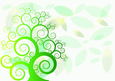 Πράσινο δέντρο στο φύλλωμα υποβάθρου Στοκ Φωτογραφίες