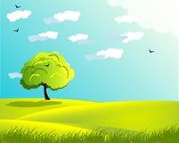 Πράσινο δέντρο τοπίων Στοκ Εικόνες