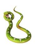 Πράσινο δέντρο Python στο λευκό Στοκ φωτογραφία με δικαίωμα ελεύθερης χρήσης