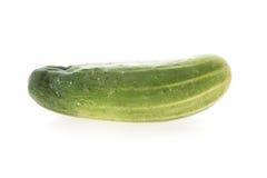 Πράσινο λαχανικό αγγουριών Στοκ Εικόνα
