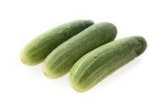 Πράσινο λαχανικό αγγουριών Στοκ Φωτογραφίες