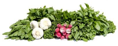Πράσινο λαχανικό Στοκ Φωτογραφίες
