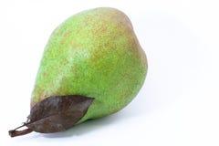 πράσινο αχλάδι φύλλων Στοκ Φωτογραφία
