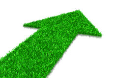 Πράσινο βέλος χλόης Στοκ Εικόνες