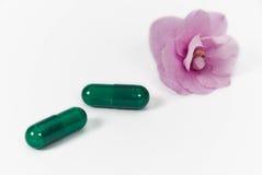 πράσινο βοτανικό φαρμακείο ιατρικής στοκ εικόνες