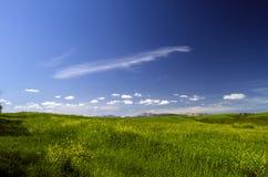 πράσινο βουνό λιβαδιών Σύνθεση της φύσης Όμορφο τοπίο της μεγάλης άποψης άνοιξη Καύκασου της φύσης Άνοιξη στο Αζερμπαϊτζάν Στοκ Φωτογραφία