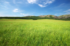 πράσινο βουνό λιβαδιών Στοκ εικόνα με δικαίωμα ελεύθερης χρήσης
