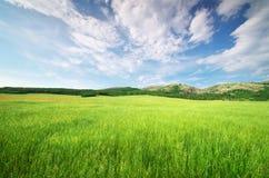 πράσινο βουνό λιβαδιών Στοκ φωτογραφίες με δικαίωμα ελεύθερης χρήσης