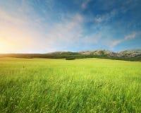 πράσινο βουνό λιβαδιών Στοκ Εικόνες
