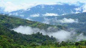 Πράσινο βουνό με τις ομίχλες στοκ φωτογραφίες με δικαίωμα ελεύθερης χρήσης