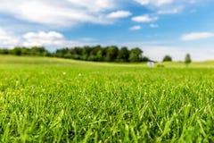 Πράσινο γήπεδο του γκολφ με το μπλε ουρανό Στοκ Εικόνες