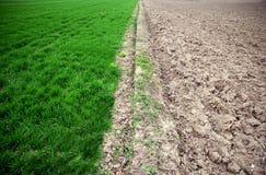 Πράσινο γεωργικό και άγονο πεδίο Στοκ φωτογραφίες με δικαίωμα ελεύθερης χρήσης