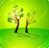 πράσινο δέντρο άνοιξη ανασκόπησης Στοκ Εικόνες