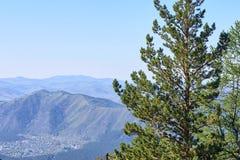 πράσινο δέντρο μπλε ουρανός tsey ossetia υψηλών βουνών Καύκασου όμορφη όψη Στοκ Εικόνες
