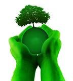 πράσινο δέντρο πλανητών χερ&io Στοκ εικόνες με δικαίωμα ελεύθερης χρήσης