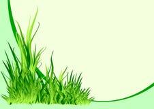 πράσινο διάνυσμα ανασκόπη&sig Στοκ Εικόνες