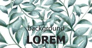 Πράσινο διανυσματικό έμβλημα watercolor κλάδων Η όμορφη εκλεκτής ποιότητας κρητιδογραφία χρωματίζει τα floral ντεκόρ διανυσματική απεικόνιση