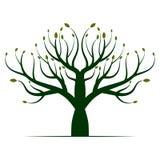 Πράσινο εικονίδιο λογότυπων δέντρων ελεύθερη απεικόνιση δικαιώματος