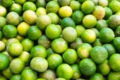 πράσινο λεμόνι Στοκ Εικόνα