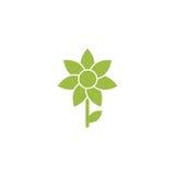 Πράσινο επίπεδο εικονίδιο του ηλίανθου με το κλαδάκι και το φύλλο Στοκ Φωτογραφίες