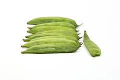 Πράσινο επίπεδο φασόλι Στοκ Φωτογραφία