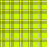 Πράσινο ελεγμένο ύφασμα Στοκ Εικόνα